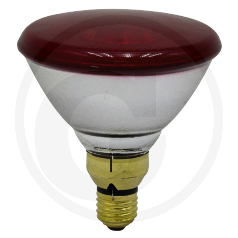 Infračervené žiarovky